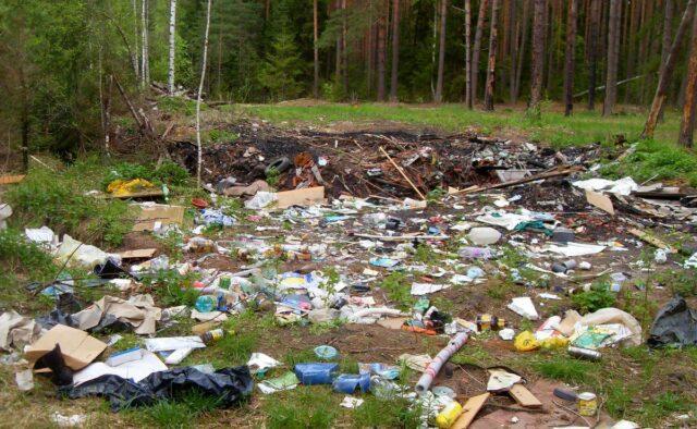 musor v lesu 640x394 - Мусор в лесу: кто виноват и что делать